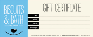 Dogcare and dog walking gift certificate