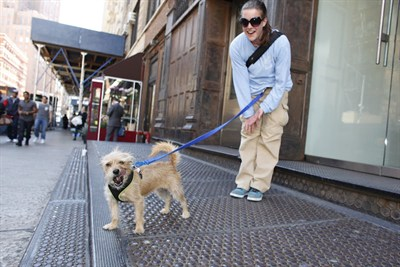 dog_tb_on_walk_400x267