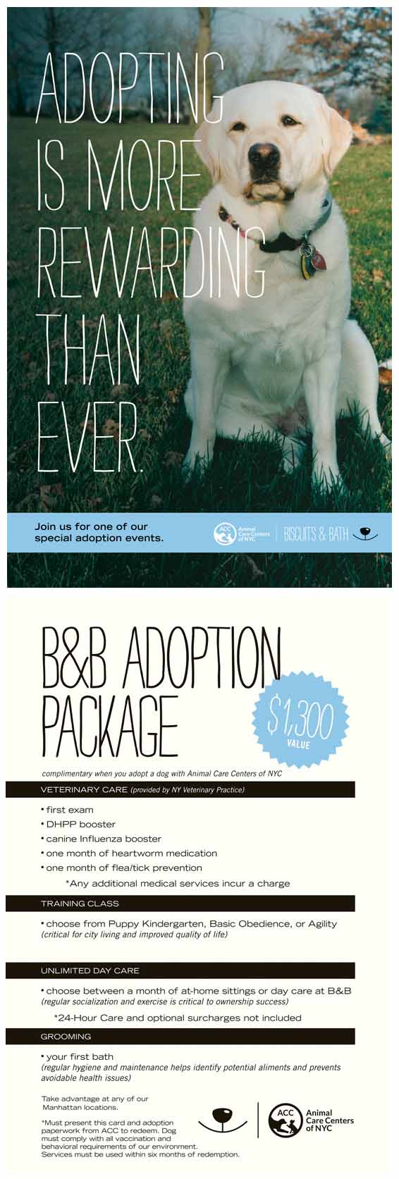ADOPTION OFFER