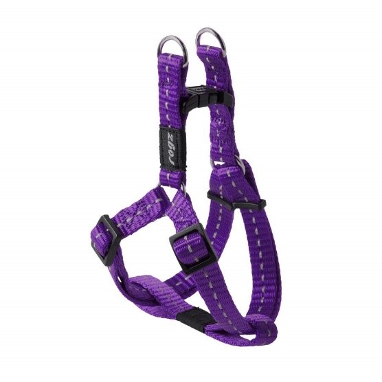 Back Clip Harness
