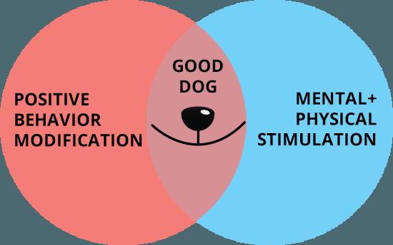 Good Dog Chart
